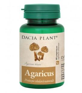 Agaricus, 60 comprimate