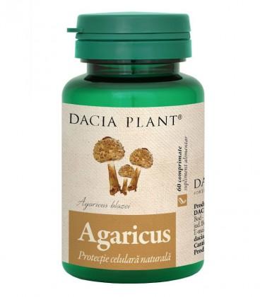 Agaricus, 60 comprimate - DACIA PLANT