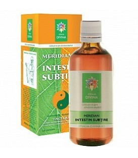 Meridianul Intestin Subtine, 100 ml