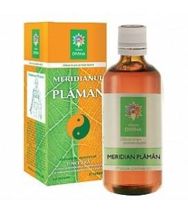 Meridian plaman (tinctura), 100 ml
