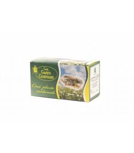 Ceai gastric cicatrizant, 1.5 grame x 20 doze