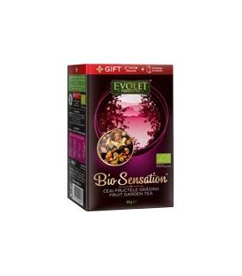 Ceai Fructele gradinii - Evolet (Bio), 80 grame
