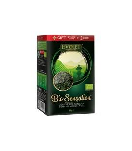 Ceai verde cu Sencha - Evolet (Bio), 80 grame