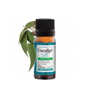Ulei eucalipt esential uz extern, 10 ml