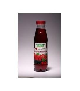 Sirop de fructe de padure, 500 ml