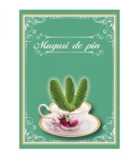 Ceai Muguri de pin, 50 grame