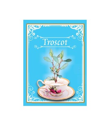 Ceai Troscot, 50 grame