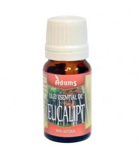 Ulei esential de eucalipt, 10 ml