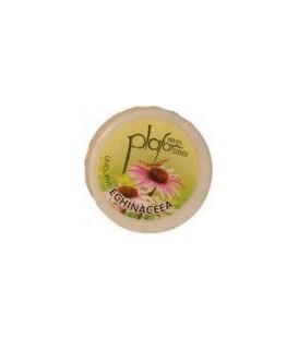 Unguent Echinacea, 20 grame / 25 ml