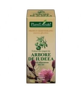 Extract din muguri de arbore iudeea, 50 ml