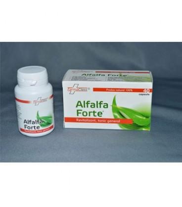 Alfaalfa Forte, 40 capsule