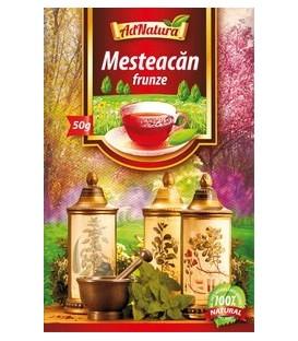 Ceai de mesteacan, 50 grame