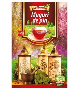 Ceai din muguri de pin, 50 grame