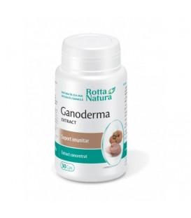 Ganoderma extract, 30 capsule