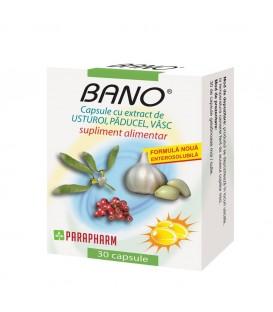 BANO-UST+PAD+VASC 30CPS