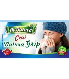 Ceai pentru raceala si gripa (Natura Grip), 20 doze