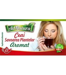 Ceai aromat (Savoarea Plantelor), 20 doze