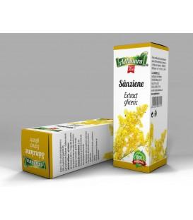 Extract gliceric Sanziene cu flori de galbenele, 50 ml