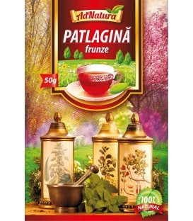 Ceai din frunze de patlagina, 50 grame
