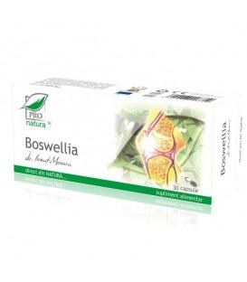 Boswellia, 30 capsule