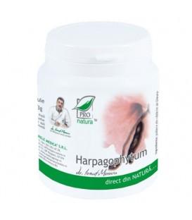 Harpagophytum, 200 capsule