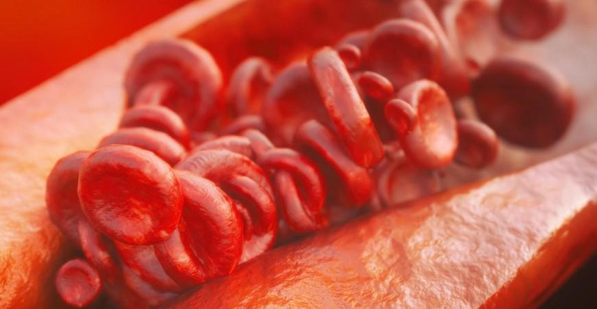 Diferenta dintre colesterolul bun si colesterolul rau